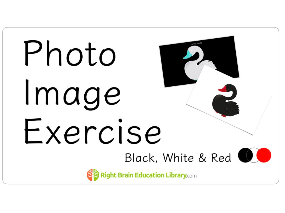 Photographic Memory Training Through Photo Image Exercise