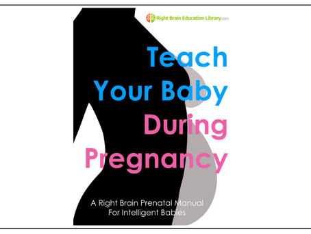 We have just updated the Right Brain Prenatal Education Book