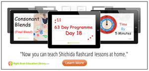 Shichida Flashcards