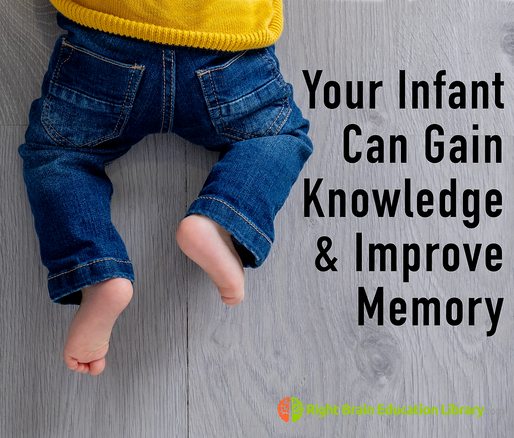 Your infant can gain knowledge and improve memory