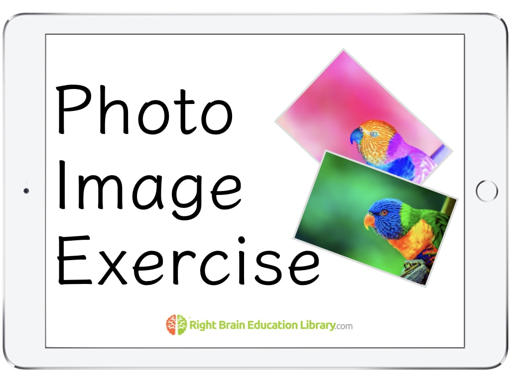 Photo Image Exercise Program