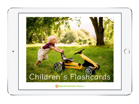 Baby Flash Cards You Should Buy (for 0 - 3 months old & above 4 months old).