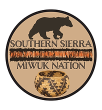 SSM logo99.png