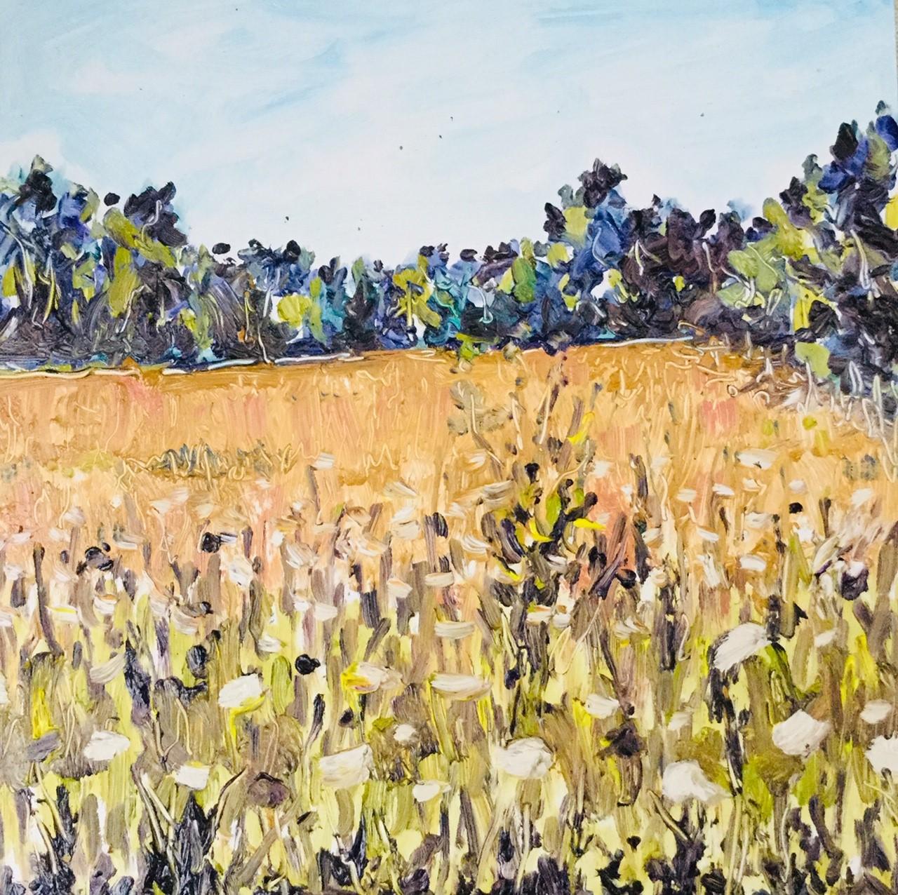 Pop-Up-Rick-Risch_Untitled-Field_oil_12x