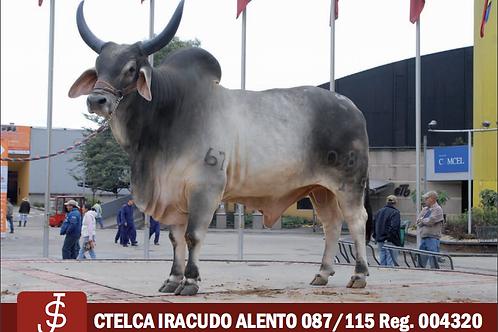 CTELCA IRACUDO ALENTO 087/115