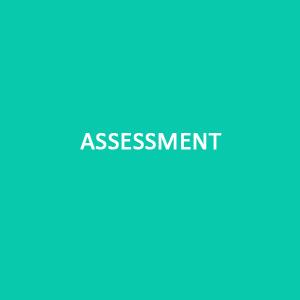 tr-assessment