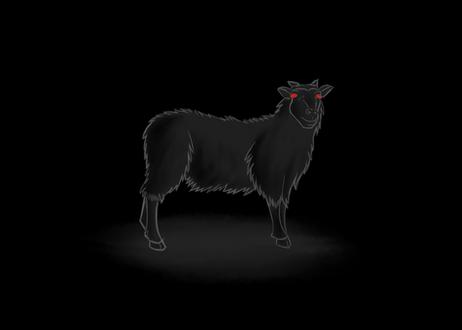 Black_Sheep.png