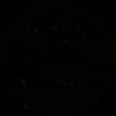 Logo ConversioV2mittel.png