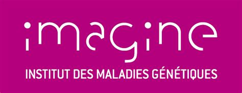 Imagine, un institut français qui lutte contre les malades génétiques