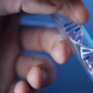 genome-mutation_0.jpg