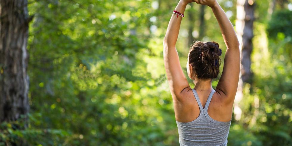 Hatha yoga en plein air  jeudi