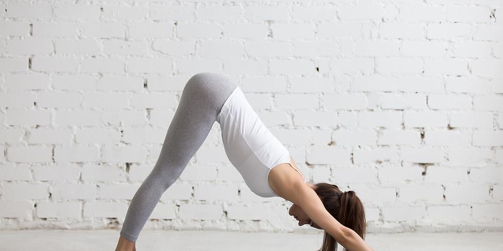 Développer sa pratique personnelle de yoga (1)