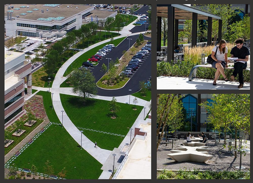 Yale West Campus Landscape Enhancements
