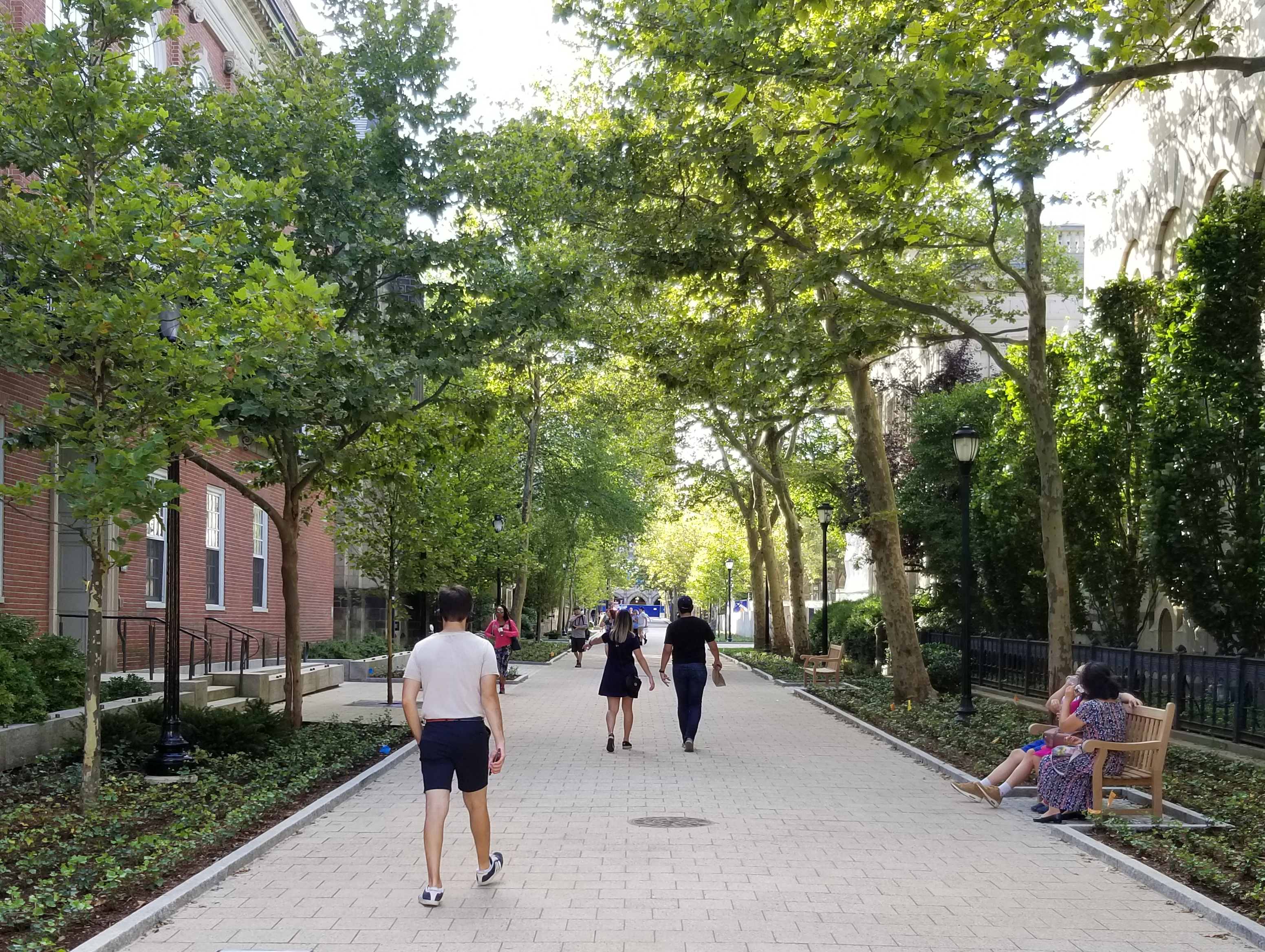 A NEW ENGLAND UNIVERSITY STREETSCAPE