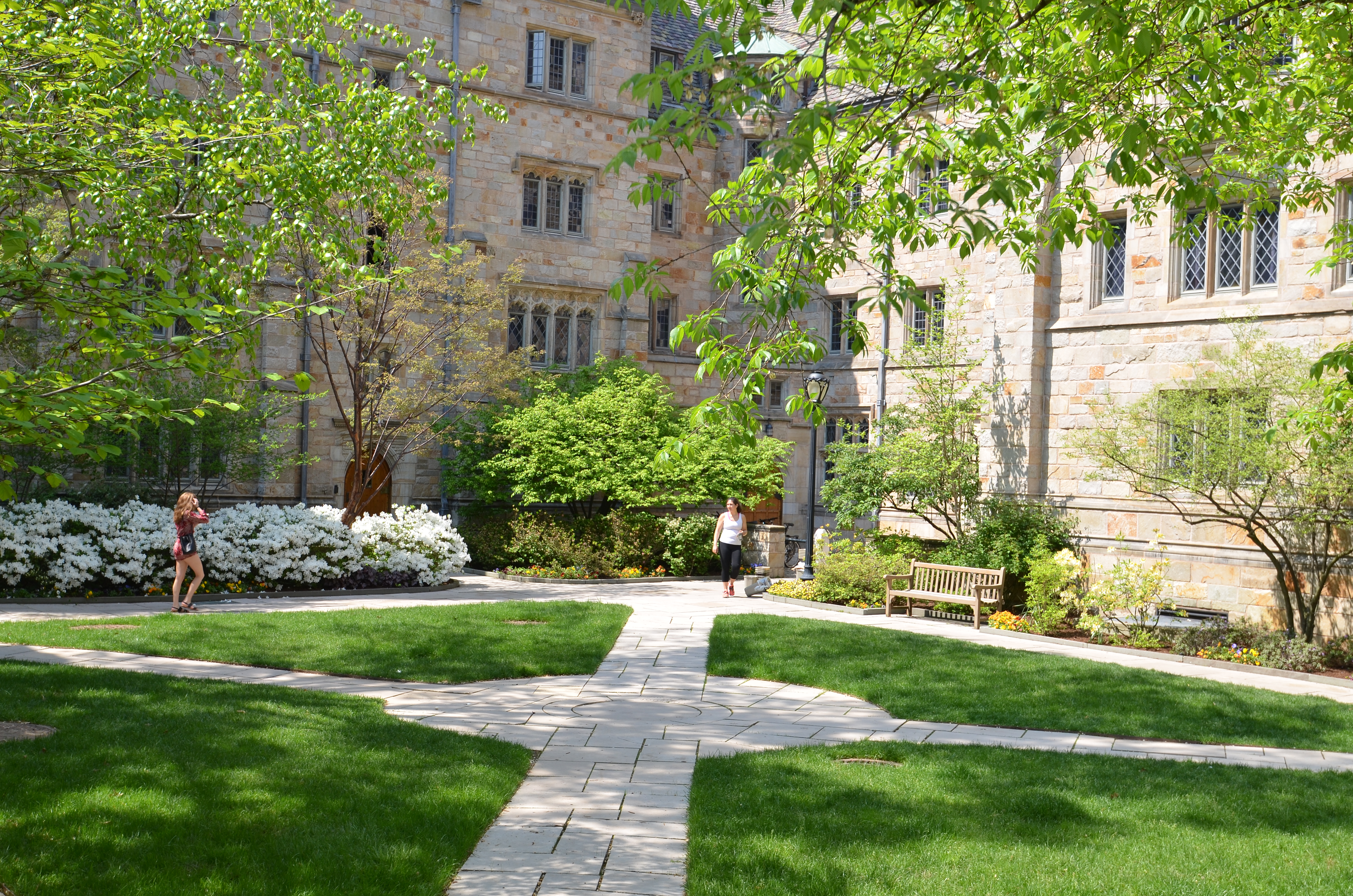Saybrook College