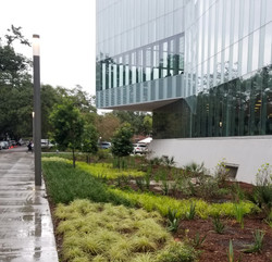 The Commons at Tulane University