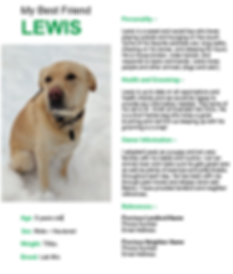 Example Pet Resume.PNG