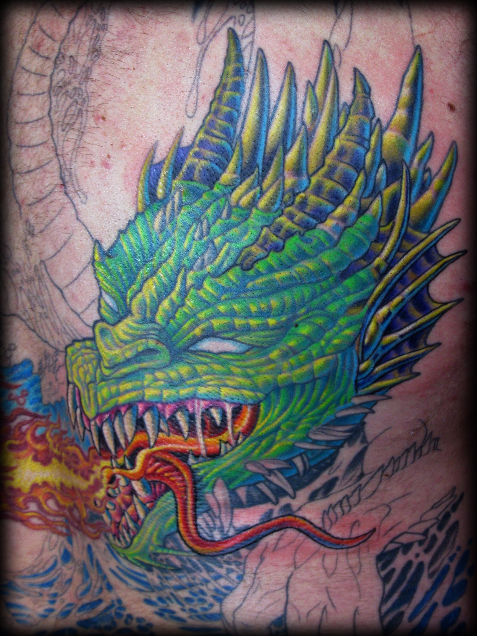 Dragon Back 03