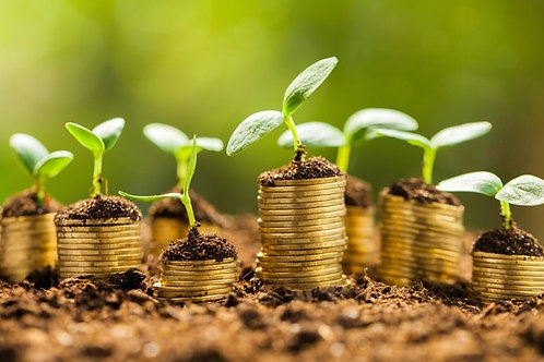 Group Financial Webinar