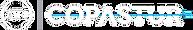 logo_site_copastur.png