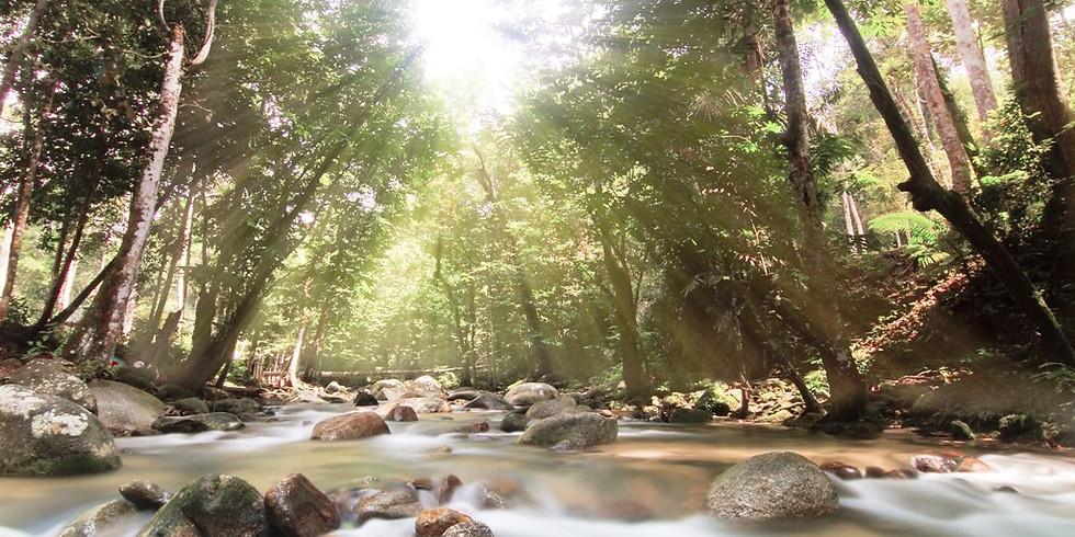 Sungai Tua Camping Adventure