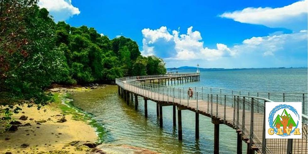 CAVA ADULTS - Pulau Ubin (Endut Senin Campsite) Beach Camping Adventure!!