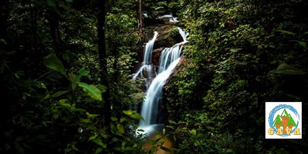 CAVA ADULTS - Sungai Pisang Waterfall Camping Adventure!! (Resort Camping)