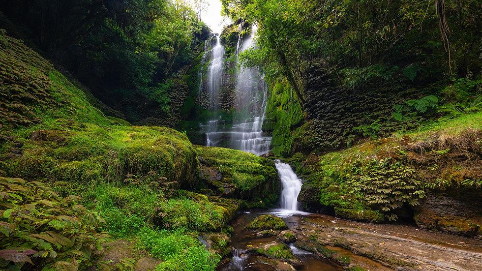 Waitanguru Falls - Waikato - New Zealand