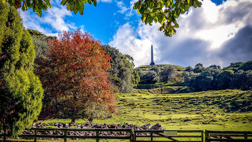 One Tree Hill - Cornwall Park - Auckland