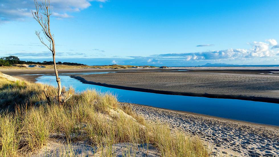 Pakiri Beach - North Island - New Zealand
