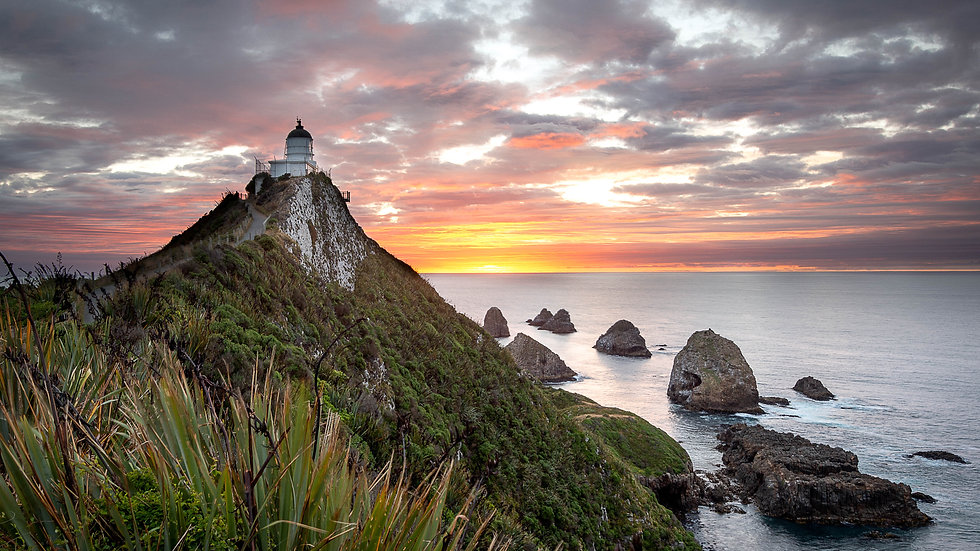 Nugget Point Lighthouse - Catlins- South Island - New Zealand