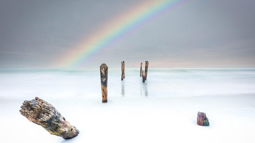 St Clair Beach - Dunedin- South Island - New Zealand