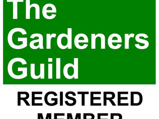 New Consultant Member of The Gardeners Guild!