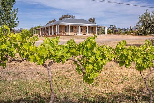 Baarmutha Wines