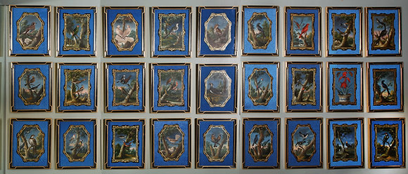 (#1419) A Rare and Important Set of 28 Paintings Depicting Assorted Bird Species