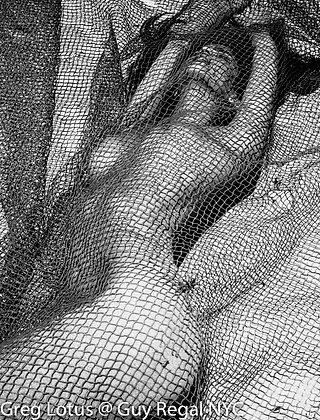 """(#1819) """"Stuck In Net"""" by Greg Lotus"""