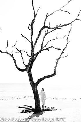 "(#1801) ""Winter"" by Greg Lotus"