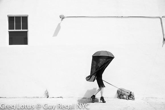 (#1610) WALKING THE PIG by Greg Lotus