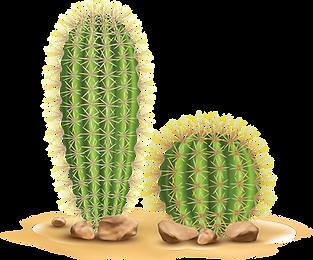 cacti-02 2k.png