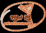 לוגו זיו מנור ללא רקע.png
