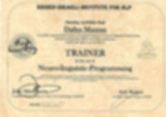 trainer nlp (1).jpg