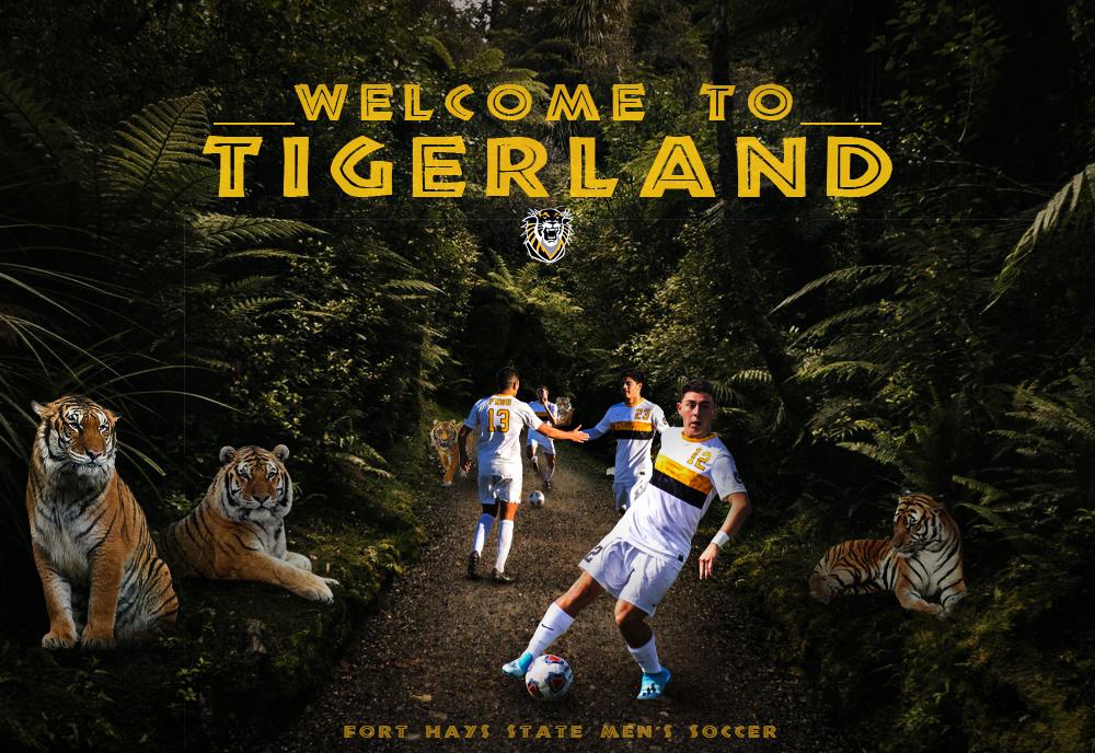 MSOC Tigerland