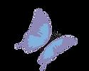 Dermasaver logo