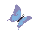 butterfly image logo for Healthsaver
