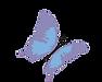DermaSaver Logo Butterfly