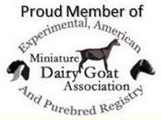 MDGA logo.JPG