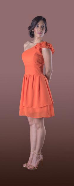 Vestido de Dama Aexa