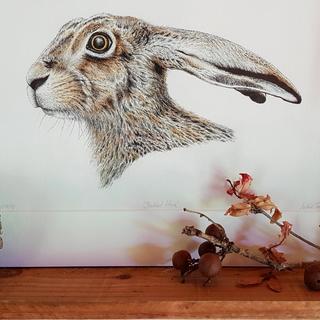 Natalie Toms Wildlife Artist