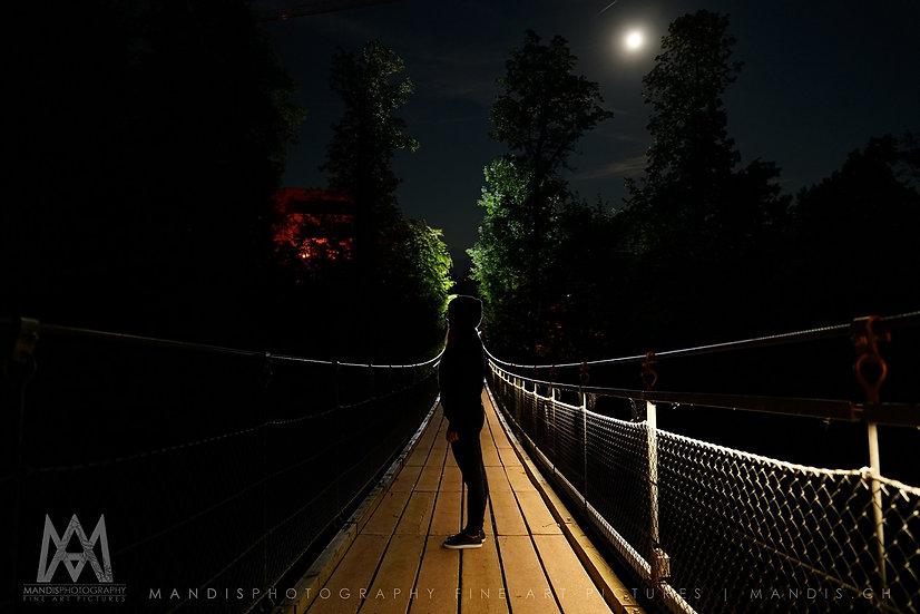 7   Plank Bridge    Meilen ZH