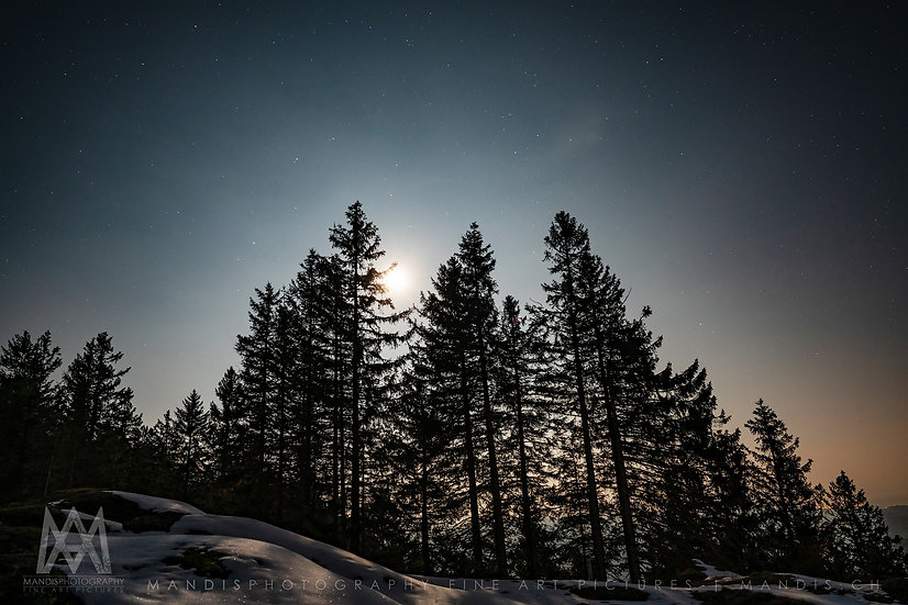 115 | Moonlight |  Schweiz
